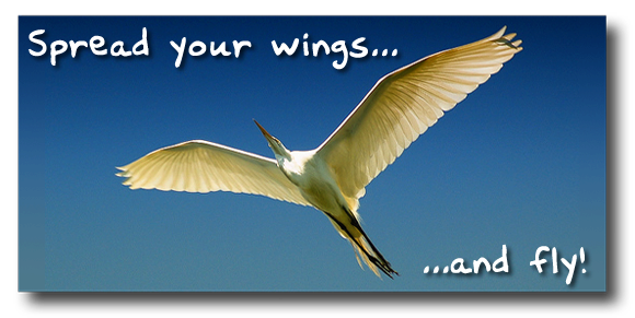 Spread your wings!