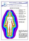 Anatomy of the Aura Chart