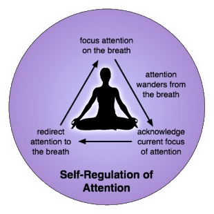 Self Regulation of Attention