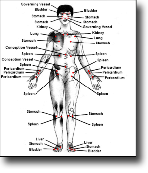 Meridian Accupressure points