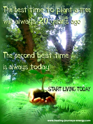 Planting Trees Quote