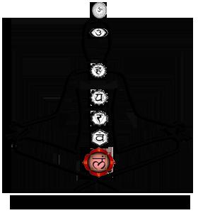 Root or Base Chakra