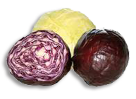 Cabbage - Colorful Recipes