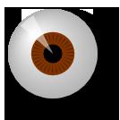 Human Eye and Color