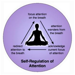 Self Regulation of Attention